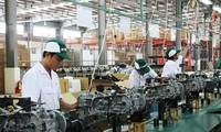 Прорывные шаги в административной реформе и привлечении инвестиций в Биньзыонг