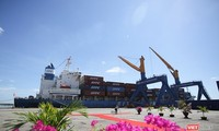 ВПСТТП: Вызовы для вьетнамских предприятий