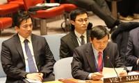 Вьетнам поддерживает справедливую борьбу палестинского народа