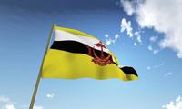 Руководство Вьетнама поздравило с Днём независимости Брунея