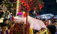 Обряд шествия с «господином Свинья» в деревне Лафу