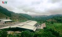 Модель по производству экологически чистой сельхозпродукции в Йенбае