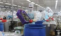 Вьетнам использует возможности для увеличения экспорта морепродуктов