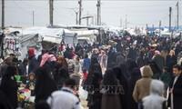 ООН призвала выделить $8,8 млрд на оказание помощи Сирии