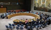 Совбез ООН провел экстренное заседание, связанное  с Голанами