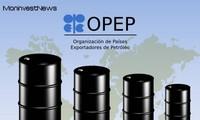 L'Opep revoit à la baisse sa prévision de demande de pétrole pour 2019