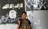 L'Irak frappe un centre d'opérations de Daech en Syrie