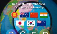 L'ASEAN est déterminée à achever les négociations sur le RCEP