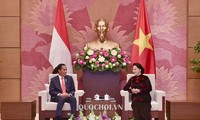 Entrevue Nguyên Thi Kim Ngân-Joko Widodo