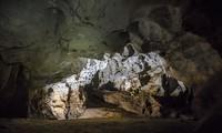 Découverte des grottes Vom et Giêng Vooc à Phong Nha
