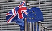 Les chefs d'entreprise se félicitent de l'approbation du projet de Brexit
