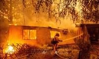 Etats-Unis : le bilan des incendies en Californie s'alourdit à au moins 59 morts