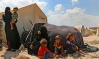 Syrie : 4 millions de personnes déplacées à l'intérieur du pays sont rentrées chez elles en 2018