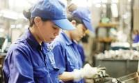 Le Vietnam soutient le développement d'entreprises innovantes