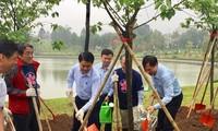 Plantation de 1.000 cerisiers du Japon dans le parc Hoà Binh à Hanoï
