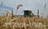 L'OMC donne raison aux États-Unis et condamne la Chine
