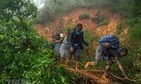 Cyclone Idai: le bilan s'alourdit à 417 morts au Mozambique