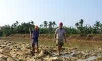 Công Luong : les travaux champêtres, une affaire d'hommes !...