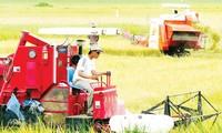 Chính phủ bổ sung vốn xây dựng nông thôn mới