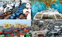 Chuyên gia Bỉ : Kinh tế Việt Nam phát triển tích cực, môi trường đầu tư rất hấp dẫn
