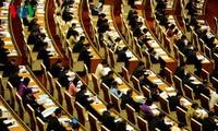 Quốc hội nghe trình bày Tờ trình và Báo cáo thẩm tra các dự án luật
