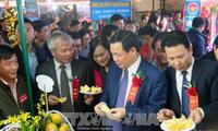 Quảng bá, tôn vinh thương hiệu cam và các nông sản Hà Tĩnh