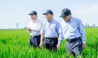 Khởi nghiệp với nông nghiệp: Từ Nghĩ Lớn