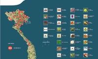 Nông sản Việt Nam được đăng ký bảo hộ chỉ dẫn địa lý đứng thứ 2 Đông Nam Á
