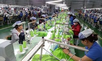 Chuyên gia Italy: EVFTA mở đầu kỷ nguyên mới của hợp tác Việt Nam - EU