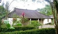 Giá trị di sản ở làng cổ Phước Tích ở Huế