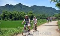 เวียดนามได้ต้อนรับนักท่องเที่ยวต่างประเทศเกือบ 8 ล้านคนในปี 2015