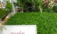 กองทุนสนับสนุนเกษตรกรนครโฮจิมินห์ช่วยเกษตรกรหลุดพ้นจากความยากจน