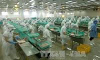 เวียดนามเป็นหนึ่งในเศรษฐกิจเพิ่งโดดเด่นที่มีอัตราการขยายตัวทางเศรษฐกิจรวดเร็วที่สุด