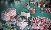 มูลค่าการส่งออกสินค้าของสาธารณรัฐเกาหลีไปยังเวียดนามเพิ่มขึ้นอย่างรวดเร็ว