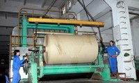 เวียดนาม-อินโดนีเซียกระชับความร่วมมือด้านอุตสาหกรรมน้ำมันปาล์มและกระดาษ