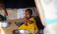 สหประชาชาติเรียกร้องให้แก้ไขปัญหาความอดอยากในเยเมน โซมาเลีย ซูดานใต้และไนจีเรีย