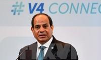 อียิปต์ยืนยันอีกครั้งถึงการสนับสนุนการจัดตั้งรัฐปาเลสไตน์