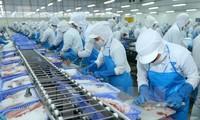สื่อระหว่างประเทศชื่นชมความสำเร็จในการพัฒนาเศรษฐกิจของเวียดนาม
