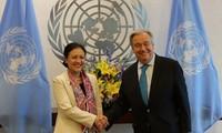 国連、多国間フォーラムにおけるベトナムの役割を高く評価