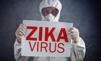การแพร่ระบาดของเชื้อไวรัสซิก้าและอีโบลาอย่างรุนแรงในประเทศต่างๆ