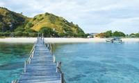 อินโดนีเซียจะปิดเกาะมังกรโคโมโด  เป็นการชั่วคราว