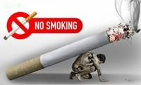WHOเรียกร้องให้รัฐบาลประเทศต่างๆเร่งปฏิบัติเพื่อแก้ไขปัญหาการสูบบุหรี่ ปัญหาสุขภาพ สังคม สิ่งแวดล้อมและเศรษฐกิจ