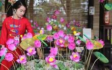Hue festival revives traditional craft