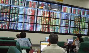 Vietnamese stock market eyes development trends