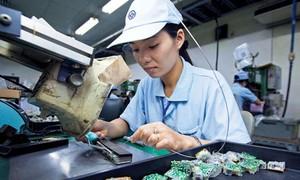 持続的な輸出の発展へ向けて