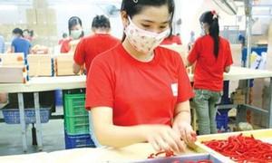 Động lực cho kinh tế tư nhân phát triển