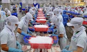Exportación de productos acuíferos de Vietnam para cumplir la meta trazada de 2017