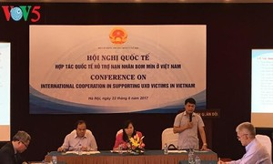 International support for Vietnamese UXO victims