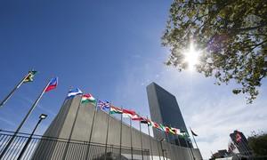 Vietnam, UN mark 40 years of cooperation