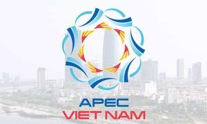 ผลสำเร็จของปีเอเปก2017สร้างพลังขับเคลื่อนใหม่ให้แก่เวียดนาม